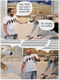 Dank, Dad Jokes, and 🤖: Hey, Wolf,  you want a  bite of my  sandwich?  No, thanks  I'm stuffed.  HAAAAAAAA HAHAHAHAHAHAHA  HAAAA  HAHAHAHAHAHAHA  .HHAAAAA  AL1HHHHAAALAL Exactly what a dad joke should be. http://9gag.com/gag/aBWKe4x?ref=fbpic