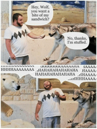"""Tumblr, Blog, and Wolf: Hey, Wolf,  you want a  bite of my  sandwich?  No, thanks  I'm stuffed.  HHHHAAAAAAAA AHAHAHAHAHAHAHA HAAAA  HAHAHAHAHAHAHA HHAAAA <p><a href=""""https://loloftheday.tumblr.com/post/166848705719/the-stuffed-wolf"""" class=""""tumblr_blog"""">loloftheday</a>:</p>  <blockquote><h2>The Stuffed Wolf</h2></blockquote>"""