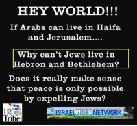 Doe, Memes, and Live: HEY WORLD!!!  If Arabs can live in Haifa.  and Jerusalem....  Why can't Jews live in  Hebron and Bethlehem?  Does it really make sense  that peace is only possible  by expelling Jews?  ISRAELVIDEONETWORK  Tribe