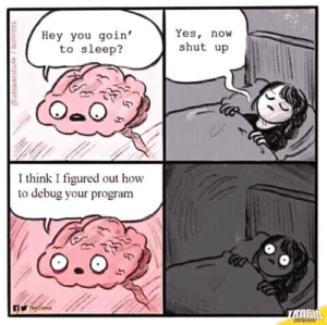 Shut Up, How To, and Sleep: Hey you goin'  to sleep?  Yes, now  shut up  I think I figured out how  to debug your program Will You Let Me Sleep, PLEASE?