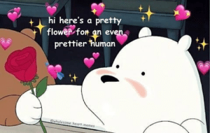 I'm just gonna post here, Totallynotsendingthistomycrush: hi here's a pretty  flower for an even.  prettier human  ewholesome heart.memes I'm just gonna post here, Totallynotsendingthistomycrush