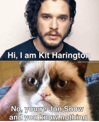 Hi, I am Kit Harington  IGJuniverseofthrones  Noo you're Jon Snow  and you know nothing He is always Jon Snow 😂 . . gotseason6 gotseason7 gameofthronesseason6 gameofthronesseason7 gameofthronesfamily gameofthronesmemes winteriscoming instagood asongoficeandfire princeoficeandfire gameofthrones windsofwinter love followme followforfollow