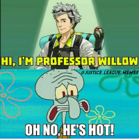 When the new Pokemon professor is better looking than you can ever hope to be. -Nightwing: HI. IM PROFESSOR WILLOW  O JUSTICE.LEAGUE MEMES  OH NOHE'S HOT When the new Pokemon professor is better looking than you can ever hope to be. -Nightwing