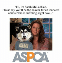 search sarah mclachlan memes on me me