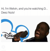 Deez Nuts, Memes, and Deez: Hi, I'm Welvin, and you're watching D  Deez Nuts!  DIS  EL  CHA  ChUBinton Nha who is making these 😂😂