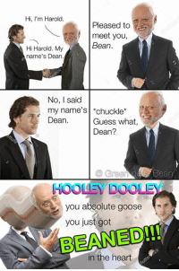 It's been almost a year since Dean's beaning and he hasn't been the same since.: Hi, m Harold.  Pleased to  meet you,  Bean  Hi Harold. My  name's Dean  No, I said  my name's chuckle  Dean  Guess what,  Dean?  Bean  HOOLEY DOOLE  you absolute goose  you just got  in the heart It's been almost a year since Dean's beaning and he hasn't been the same since.