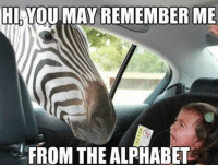 HI VOU MAY REMEMBER ME  FROM THE ALPHABET Z for zebra! 😂😂😂