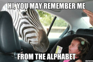 Alphabet, Remember Me, and May: HI,YOU MAY REMEMBER ME  FROM THE ALPHABET  zipmeme Z is for Traumatized