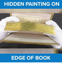 Memes, Paint, and 🤖: HIDDEN PAINTING ON  EDGE OF BOOK Wow.. Did you see that.. So cool! :o #diplymix