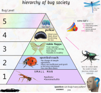 "Memes, Police, and Precious: hierarchy of bug society  Bug Level  this one  s me  some stat's:  3563 bugs died so far  407 good feelings  10793 buzzes n chirps  68 horrific mining accidents  Gembert  3 uprisings suppressed  police  4  3  2  .dont even  think about  breakenin  the law  noble flappe  can vaporise  enemys with strong  laser attaclk  nimble& wealthy  spottled roach  .in charge of simple  operations  .they are inefficient and quick  to become emotional  .no one likes them  here he comes from  the south to trade  precious stones and  minerals  SMALL MAN  epathetic  unremarkable  question: can bugs have autism?  answer yes <p>Could hierarchy memes be good? via /r/MemeEconomy <a href=""http://ift.tt/2pZY6kq"">http://ift.tt/2pZY6kq</a></p>"