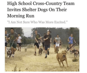 """Dogs, Run, and School: High School Cross-Country Team  Invites Shelter Dogs On Their  Morning Run  """"I Am Not Sure Who Was More Excited."""" The cameraman needs to get out of there"""