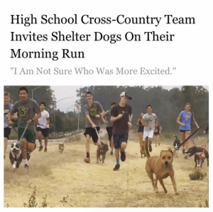 "More of this please. Well done St J Athletics.Via @thedodo: High School Cross-Country Team  Invites Shelter Dogs On Their  Morning Run  ""I Am Not Sure Who Was More Excited."" More of this please. Well done St J Athletics.Via @thedodo"