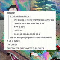 Dank, 🤖, and Queer: hiimiamie:  too-stoned-to-remember:  Why do dogs go mental when they see another dog  I imagine that in their heads they're like  THAT IS DOG  IAM DOG  DOG DOG DOG DOG DOG DOG  i do this with queer people in unfamiliar environments  THAT IS QUEER  I AM QUEER  QUEER QUEER QUEER QUEER QUEE QUEER 🌈😂