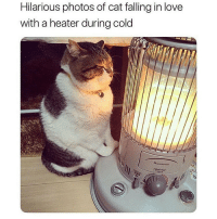 must keep warm plz @tanryug: Hilarious photos of cat falling in love  with a heater during cold must keep warm plz @tanryug