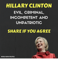 Hillary Clinton, Memes, and News: HILLARY CLINTON  EVIL, CRIMINAL,  INCOMPETENT AND  UNDATRIOTIC  SHARE IF YOU AGREE  WORLD NEWS POLITICS And completely insane!