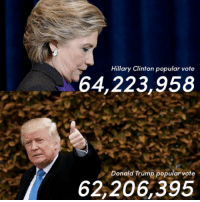 They say a picture is worth a thousand words...: Hillary Clinton popular vote  64,223,958  Donald Trump popular vote  62,206,395 They say a picture is worth a thousand words...
