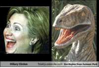Raptor Meme: Hillary Clinton  Totally LooksLike com the Raptor from Jurassic Park