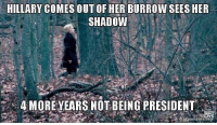 Her, President, and Shadow: HILLARY COMES OUT OF HER BURROW SEES HER  SHADOW  4 MOREYEARS NOT BEING PRESIDENT  akeamemeiorc