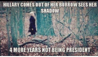 Her, President, and Shadow: HILLARY COMESOUT OF HER BURROW SEES HER  SHADOW  S,4 MORE YEARS NOT BEING PRESIDENT