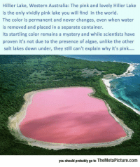 """<p><a href=""""https://epicjohndoe.tumblr.com/post/172730297049/the-only-pink-lake-in-the-world"""" class=""""tumblr_blog"""">epicjohndoe</a>:</p>  <blockquote><p>The Only Pink Lake In The World</p></blockquote>: Hillier Lake, Western Australia: The pink and lovely Hiller Lake  is the only vividly pink lake you will find in the world.  The color is permanent and never changes, even when water  is removed and placed in a separate container.  Its startling color remains a mystery and while scientists have  proven it's not due to the presence of algae, unlike the other  salt lakes down under, they still can't explain why it's pink...  you should probably go to TheMetaPicture.com <p><a href=""""https://epicjohndoe.tumblr.com/post/172730297049/the-only-pink-lake-in-the-world"""" class=""""tumblr_blog"""">epicjohndoe</a>:</p>  <blockquote><p>The Only Pink Lake In The World</p></blockquote>"""