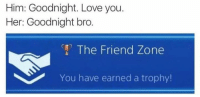 Memes, 🤖, and Him: Him: Goodnight. Love you.  Her: Goodnight bro  The Friend Zone  You have earned a trophy! Well done bro