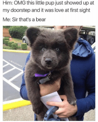 Instagram, Love, and Memes: Him: OMG this little pup just showed up at  my doorstep and it was love at first sight  Me: Sir that's a bear @betasalmon is cranking out memes like a madman. Follow my favorite fish on Instagram @betasalmon 🐟 (RP @betasalmon)