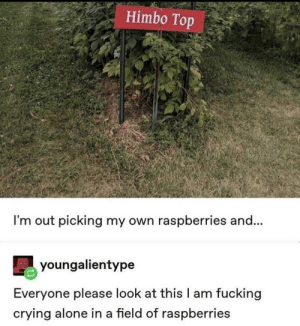 Being Alone, Crying, and Fucking: Himbo Top  I'm out picking my own raspberries and...  youngalientype  Everyone please look at this I am fucking  crying alone in a field of raspberries ... do I have to say anything