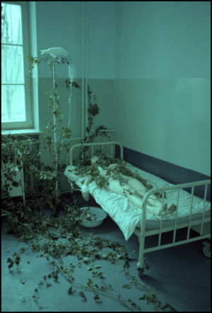 hinoenmayokai: Days of the purification   Laura Makabresku    : hinoenmayokai: Days of the purification   Laura Makabresku