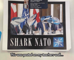 laughoutloud-club:  NATO Meeting: Hinsdale, IL 60521  D181 Administration Center  630-861-4900  630-887-1079 (fax)  www.d181  twitter.com/CCSD181  SHARK NATO  was posted on my laughoutloud-club:  NATO Meeting