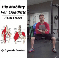 Comfortable, Memes, and Work: Hip Mobility  For Deadlifts  Horse Stance  Gluteus  maxima  Gluteus  medius  ewes  motbial tract  @dr-Jacob-harden ISOMETRIC HOLDS TO IMPROVE MOBILITY Let's talk a little mobility 🔬 science. Right now, you have the ability to get into any position you want, given the constraints of your bony anatomy. Yes, that means that even you, the human 🌳 2 x 4, potentially has the ability to do the splits. So why can't you do it? It's all in the ⚡ brain. Your brain does not feel safe letting you get to those points because it doesn't know if you'll be able to get out of them. So it creates an end range where you have to ✋ stop. Increases in mobility do not improve physical length of muscles and connective tissues unless you hold stretches for upwards of 20 to 30 minutes. What happens with ↔ stretching is that you increase the tolerance to the stretch. We can speed that process along by creating 💪 strength in addition to that stretch. This is where isometric holds come in. With an iso hold, we pull ourselves actively into as ⤵ deep of a range of motion as we can and hold there. As you build strength, that position becomes more comfortable and you can pull yourself into deeper ROM. And because you got strong there, you are already a step ahead in improving strength and performance. Use ⏱ 15 to 30 second sets to start and work up to 1 minute sets. Accumulate 3 to 5 minutes a day in a position to see some rapid improvements. MyodetoxOrlando Myodetox FutureproofYourBody