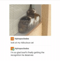 Memes, Boof, and Ridicule: hiphopocliedes  look at my ridiculous cat  hiphopocliedes  I'm so glad boof's finally getting the  recognition he deserves IT'S CALLED BOOF MY HEART IS SO HAPPY - Max textpost textposts