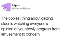 Dank, Internet, and Progressive: Hippo  @Internet Hippo  The coolest thing about getting  older is watching everyone's  opinion of you slowly progress from  amusement to Concern
