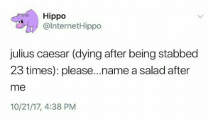 Julius: Hippo  @lnternetHippo  julius caesar (dying after being stabbed  23 times): please...name a salad after  me  10/21/17, 4:38 PM