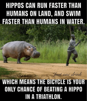 Run, Bicycle, and Water: HIPPOS CAN RUN FASTER THAN  HUMANS ON LAND, AND SWIM  FASTER THAN HUMANS IN WATER.  Just one drink  WHICH MEANS THE BICYCLE IS YOUR  ONLY CHANCE OF BEATING A HIPPO  IN A TRIATHLON. Better start practicing if I only have a chance at one event