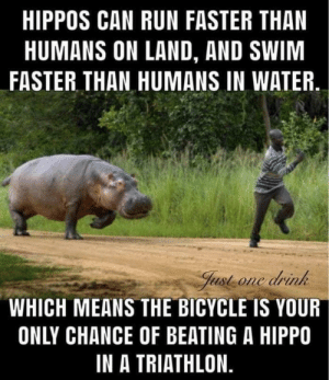 Man vs Hippo: HIPPOS CAN RUN FASTER THAN  HUMANS ON LAND, AND SWIM  FASTER THAN HUMANS IN WATER  Just one drink  WHICH MEANS THE BICYCLE IS YOUR  ONLY CHANCE OF BEATING A HIPPO  IN A TRIATHLON. Man vs Hippo
