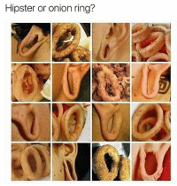 Fuck I can't tell the difference (@the.purple.sock): Hipster or onion ring? Fuck I can't tell the difference (@the.purple.sock)