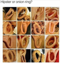 Um I actually can't tell.: Hipster or onion ring? Um I actually can't tell.