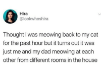 Dad, Memes, and House: Hira  @lookwhoshira  Thought I was meowing back to my cat  for the past hour but it turns out it was  just me and my dad meowing at each  other from different rooms in the house 😂Legendary