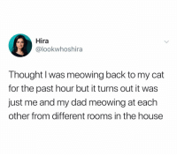 Dad, House, and Dank Memes: Hira  @lookwhoshira  Thought I was meowing back to my cat  for the past hour but it turns out it was  just me and my dad meowing at each  other from different rooms in the house @lookwhoshira