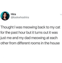 Dad, House, and Thought: Hira  @lookwhoshira  Thought I was meowing back to my cat  for the past hour but it turns out it was  just me and my dad meowing at each  other from different rooms in the house Meowing
