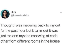 Dad, Memes, and House: Hira  @lookwhoshira  Thought I was meowing back to my cat  for the past hour but it turns out it was  just me and my dad meowing at each  other from different rooms in the house Plot twist:they don't have a cat via /r/memes https://ift.tt/2PwUVwV