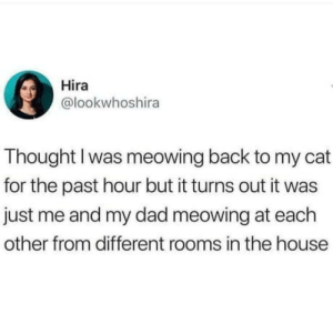 Dad, House, and Thought: Hira  @lookwhoshira  Thought I was meowing back to my cat  for the past hour but it turns out it was  just me and my dad meowing at each  other from different rooms in the house Hira, u stupid b*tch