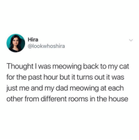 Dad, Funny, and Awkward: Hira  @lookwhoshira  Thought l was meowing back to my cat  for the past hour but it turns out it was  just me and my dad meowing at each  other from different rooms in the house Awkward