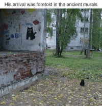 Ancient, Mew, and Arrival: His arrival was foretold in the ancient murals Little Mew is Ancient Mew