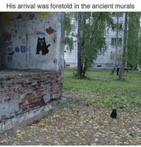 Ancient, Prophet, and Arrival: His arrival was foretold in the ancient murals Thy Prophet Has Returned