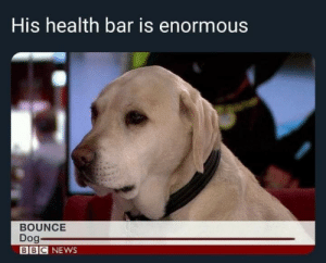 unclefather:  And why would you hurt him? : His health bar is enormous  BOUNCE  Dog  BBC NEWS unclefather:  And why would you hurt him?