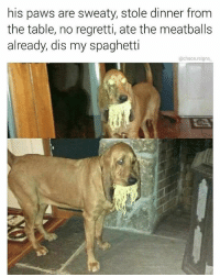 Eminem, Meme, and Memes: his paws are sweaty, stole dinner from  the table, no regretti, ate the meatballs  already, dis my spaghetti  @chaos.reigns pls enjoy this vintage meme from 2017 (follows appreciated @chaos.reigns_) bestwoof bestmeow bestfriend eminem doggo