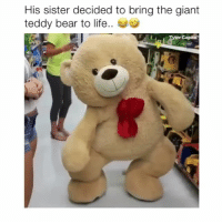 Life, Memes, and Omg: His sister decided to bring the giant  teddy bear to life.. Follow @Crelube for more videos! - Omg yes bear (Credit: unknown dm me!)