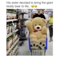 Life, Memes, and Bear: His sister decided to bring the giant  teddy bear to life.. Hilarious! 😂 Credit: @tylercapito