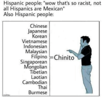 "Wow, Chinese, and Racist: Hispanic people: ""wow that's so racist, not  all Hispanics are Mexican""  Also Hispanic people:  Chinese  Japanese  orean  Vietnamese  Indonesian  Malaysian  Filípino Chinito  Singaporean  ongolian  Tibetian  Laotian  Cambodian  Thai  Burmese I'm not racist,you are racist!"